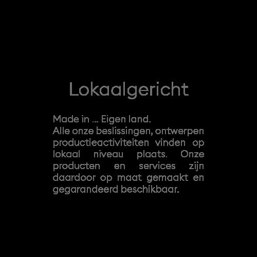 LOCAL-APPROACH-TXT-NL