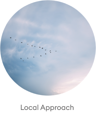 LOCAL-APPROACH